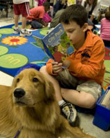 Dogs help kids who are bullied: Nine Ways How Special Dogs are Helping Children with Special Needs
