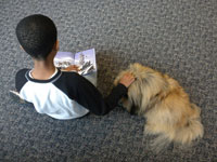 Reading to dogs promotes reading skills: Nine Ways How Special Dogs are Helping Children with Special Needs